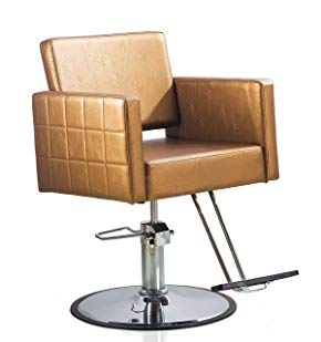Shengyu Gold Hydraulic Styling Barber Chair Hair Spa Beauty Salon Cape Equipment